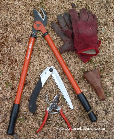 tree pruning tools