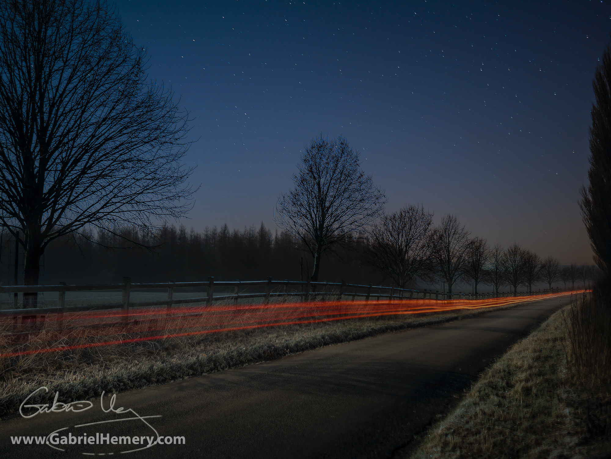 Driving to a night photography shoot - self portrait. Tree avenue and moon shadows.
