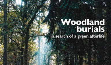 Living Woods magazine, summer 2019